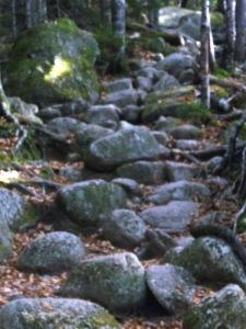 Hunt Trail - Baxter State Pk