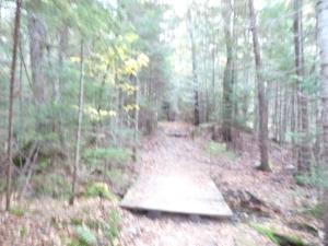 Hunt Trail start2