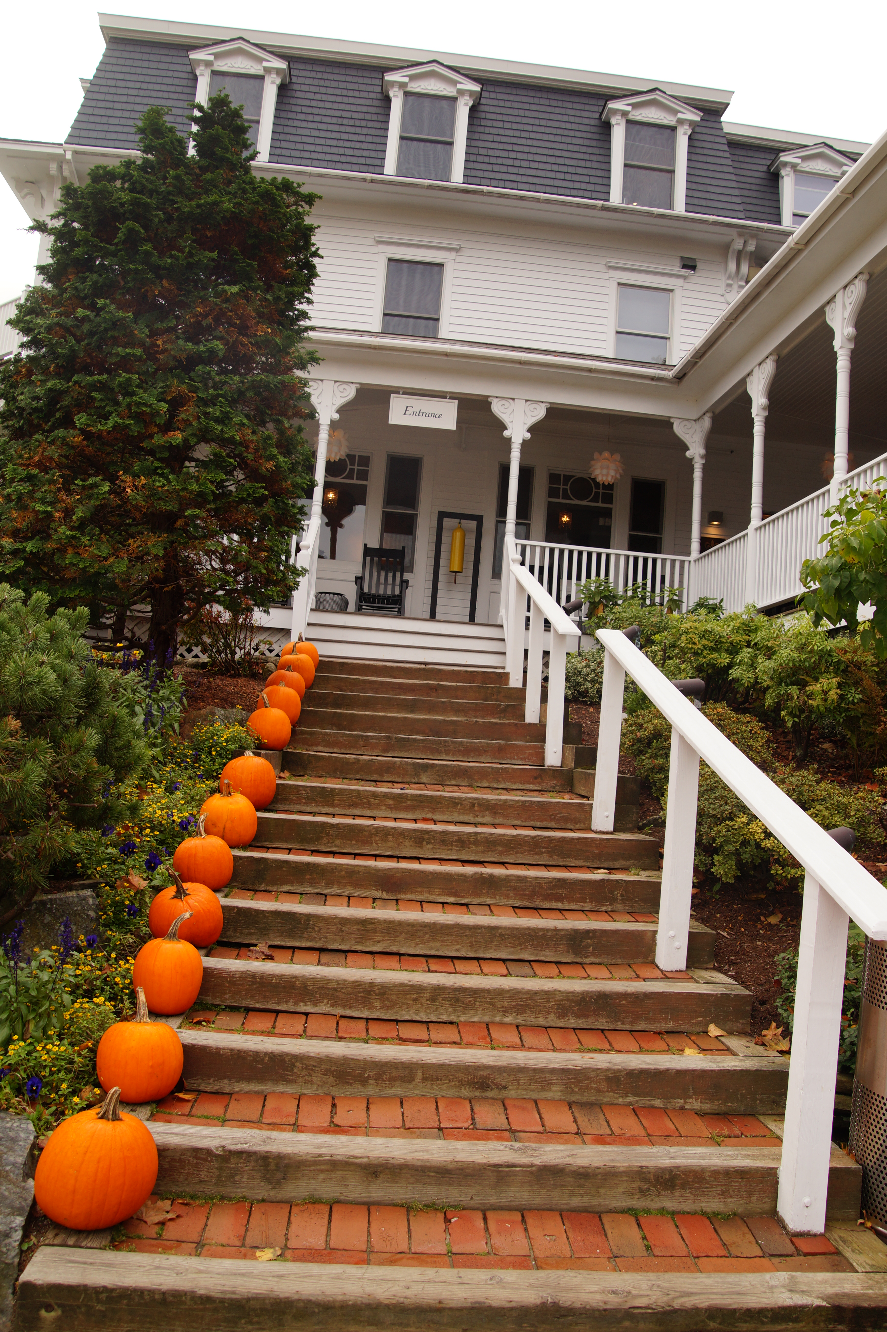 Camden Harbor Inn entry stairs & pumpkins