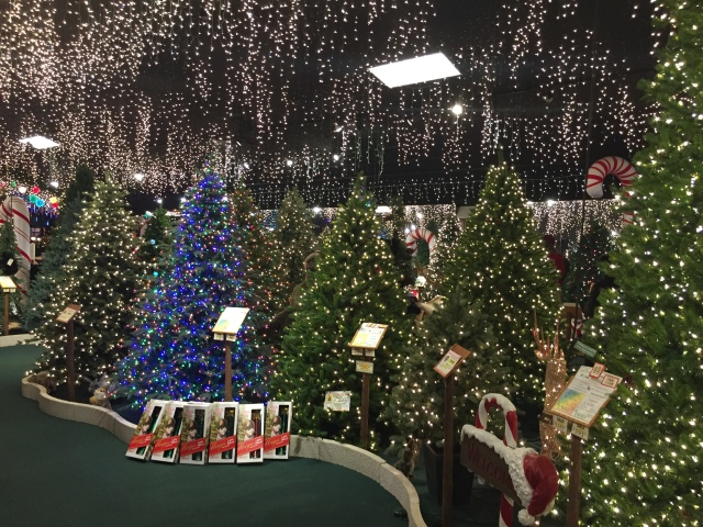 in case you havent notice its december and there are only 19 shopping days left before christmas black friday and cyber monday are gone - Roberts Christmas Wonderland
